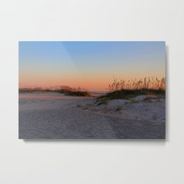 The Night Escapes Metal Print