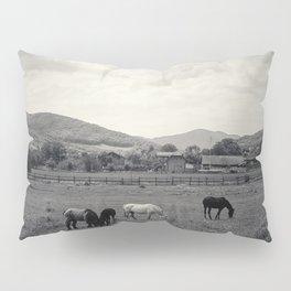 HORSE'S VALLEY Pillow Sham