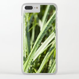 sun-lit grass Clear iPhone Case