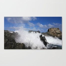 Natural Pool Canvas Print