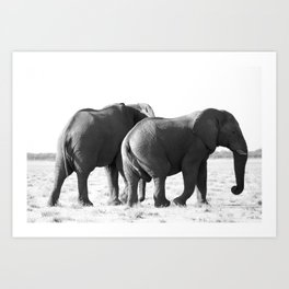 Twin Elephants Art Print