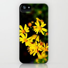 Bright Yellow Wildflowers iPhone Case