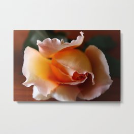 Peaches and Cream Metal Print