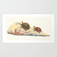 The Tortoise on a Rock Art Print