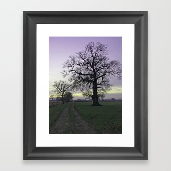 evening light... Framed Art Print