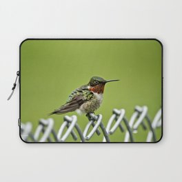 Hummingbird on a Fence Laptop Sleeve