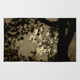 Maple in Sepia Rug