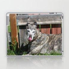 Greyhound Laptop & iPad Skin