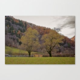 AUTUMNAL SHADES Canvas Print