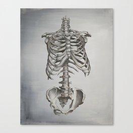 Skeleton Study Canvas Print