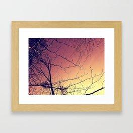 sunrise branches Framed Art Print