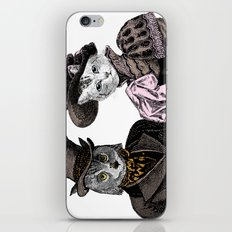 The Owl and the Pussycat iPhone & iPod Skin