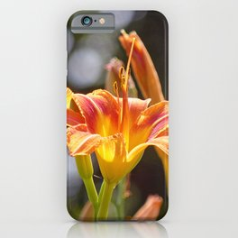 Lilies in the Sunshine iPhone Case