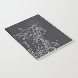 Cat Movement Notebook