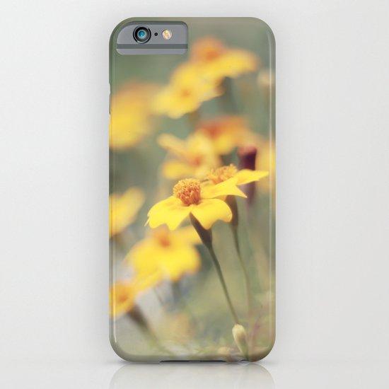 Orange zest iPhone & iPod Case