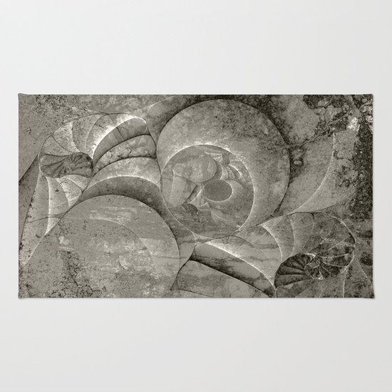 Fossilized Shells - Black & White Rug
