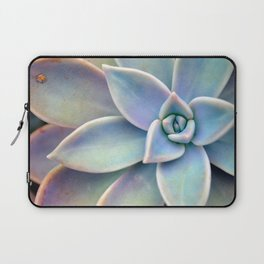 Pastel Succulent Laptop Sleeve