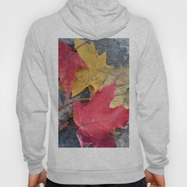 Red and Gold Leaves Hoody