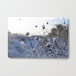 First Snowfall II Metal Print