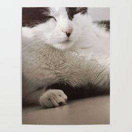 Margo - closeup Poster