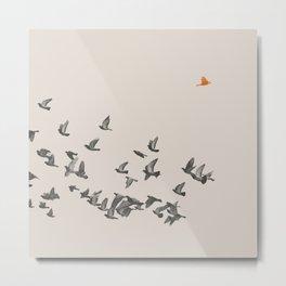 Bird and Birds Metal Print