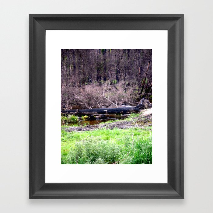 Nature's Cycle Framed Art Print