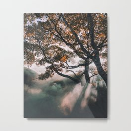 sunrays #society6 #decor #buyart Metal Print