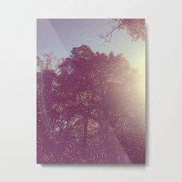 The Trees - Show Me the Way Metal Print