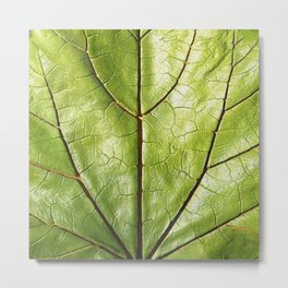 GREEN ORGANIC LEAF WITH VEINS DESIGN ART Metal Print