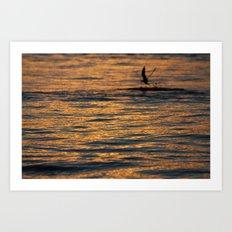 water sunset  Art Print