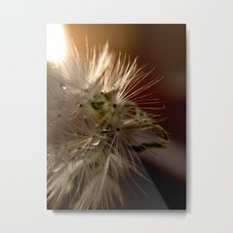 All the magic of creation... Metal Print