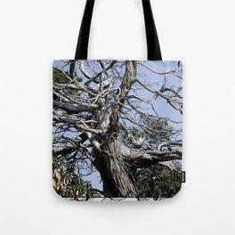 SUN-BLEACHED WINDSWEPT JUNIPER Tote Bag