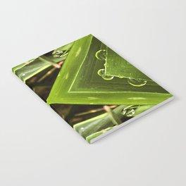 Dew Drop Jewels on Summer Green Grass Notebook