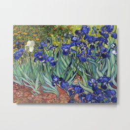 Irises by Vincent van Gogh Metal Print