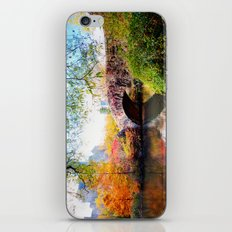 Last Autumn in Central Park iPhone & iPod Skin