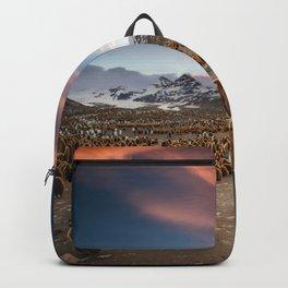 Brown penguin  Backpack