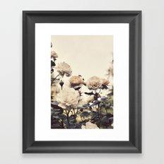 Yellow Rose Garden Framed Art Print