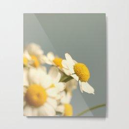 007 Flower Metal Print