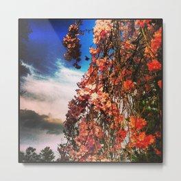 Cherry Bumble Metal Print
