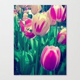 Flowers in Bloom Canvas Print