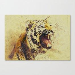 Animal Tiger Big Cat Canvas Print