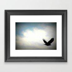 Bird in sky Framed Art Print