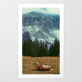 Cow in switzerland Art Print