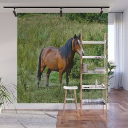 Beautiful Bay Horse In A Grassy Field Wall Mural