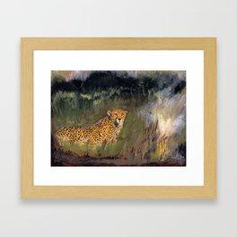 Cheetah in Moremi Framed Art Print