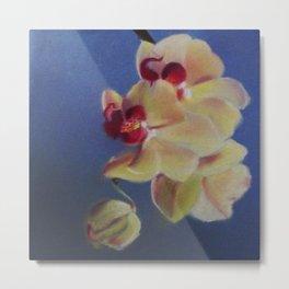 Pastel Orchids Metal Print
