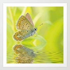 zen style butterfly green outdoor Art Print