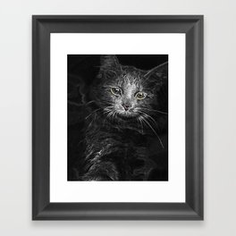 Lunar Essence of the Siberian Kitty Cat Framed Art Print
