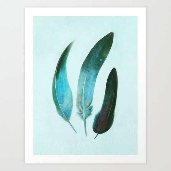 Blue Feathers  Art Print