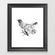Bird Wanderlust Black and White Framed Art Print